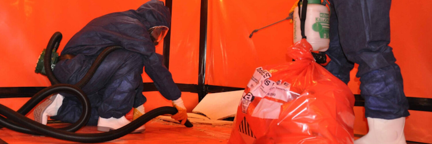 Removal process - Asbestos cost