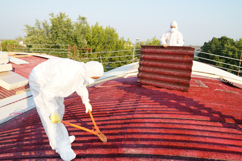 Removal professional - Asbestos cost